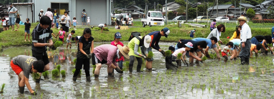 田植え祭りを開催しました!