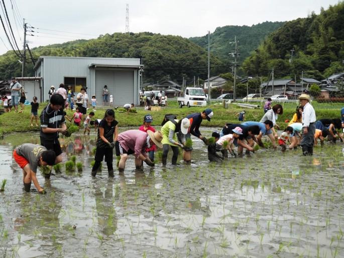 2015田植え祭り